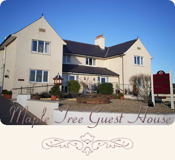 Maple Tree Guest House Gretna Scotland