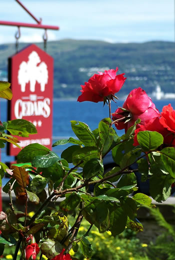 The Cedars Guest House Dunoon Scotland